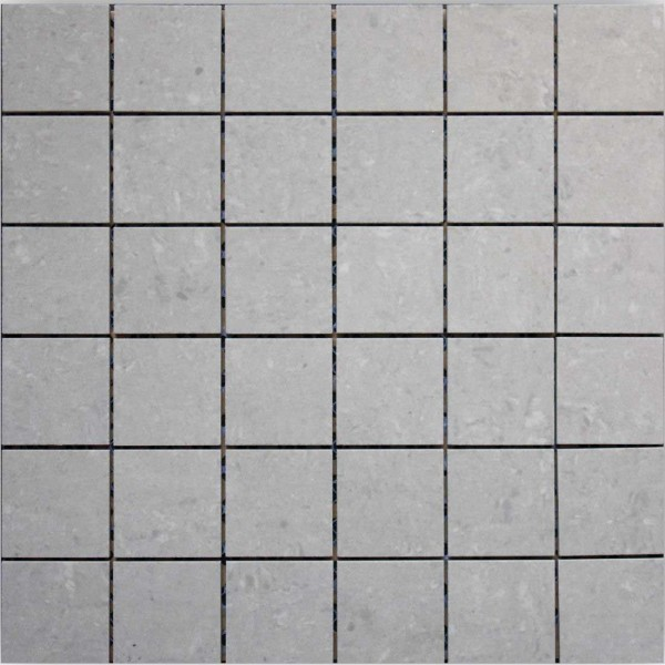 Core (4.6x4.6) 30x30cm Light Grey Polished